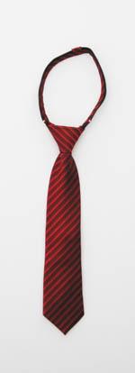 "14"" Red & Burgundy Stripe Boy's Zipper Tie 1001-3458"