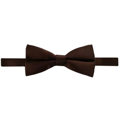 Brown Solid Banded Bow Tie 4353
