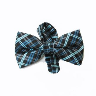 Black, Turquoise Plaid Band Bow Tie 6077-0