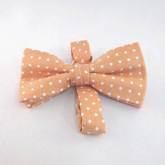 Orange w/White Dot Banded Bow Tie 5920-0