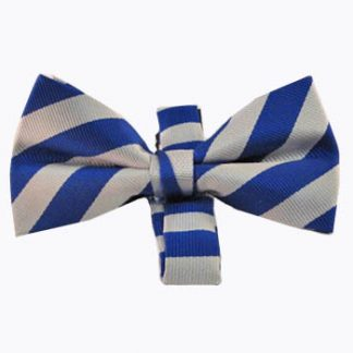 Royal & Silver Stripe Men's Band Bow Tie 11517