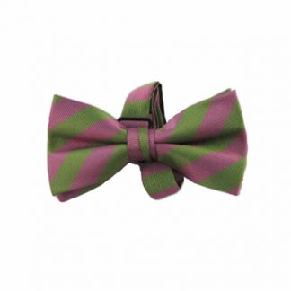 Lime, Pink Stripe Banded Bow Tie 10683-0