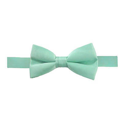 Solid Mint Banded Bow Tie 5080