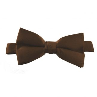 Solid Dark Brown Banded Bow Tie 3814