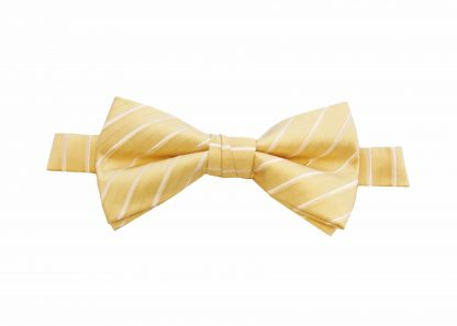 Yellow Stripe Banded Bow Tie 8487-0